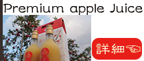 Premium apple juice
